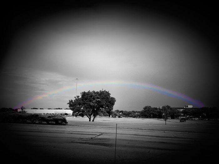 Rainbow The Whole Ranibow After Rain Showcase: November Chicago Blackandwhite Black And White Black & White Black And White/ Color Emeyebestshot