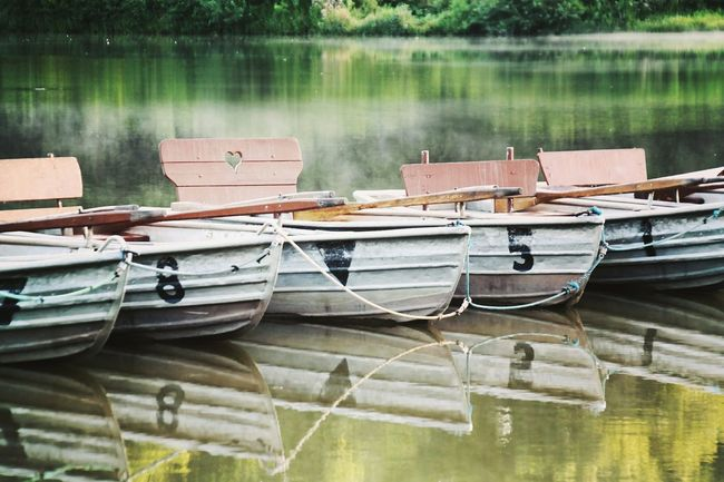 in a row... ın A Row Nautical Vessel Water No People Lake My Point Of View Boat Trip Scenics Summer Reflection Photography Green Color Tree Nature Is Art Art Is Everywhere