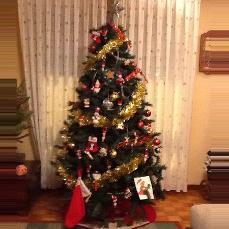 ÁRBOL DE NAVIDAD GIGANTE,YA ESTA PUESTOOO!!! Feliz Navidad Feliznavidad Feliznavidad MerryChritsmas juasjuasjuassssssssss 😘😘😘😘😍😍😍😍😋😋😋❤️❤️👏👏🐾🐾ya queda menos para las 🐄s jijijijijij (nombro a los etiquetados a colgar su árbol de Navidad jijijiji)
