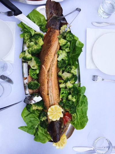Food And Drink Food Vegetable Plate Healthy Eating High Angle View Indoors  Lettuce No People Freshness Table Green Color Leaf Ready-to-eat Close-up Day Fish Salmon - Seafood Salmone