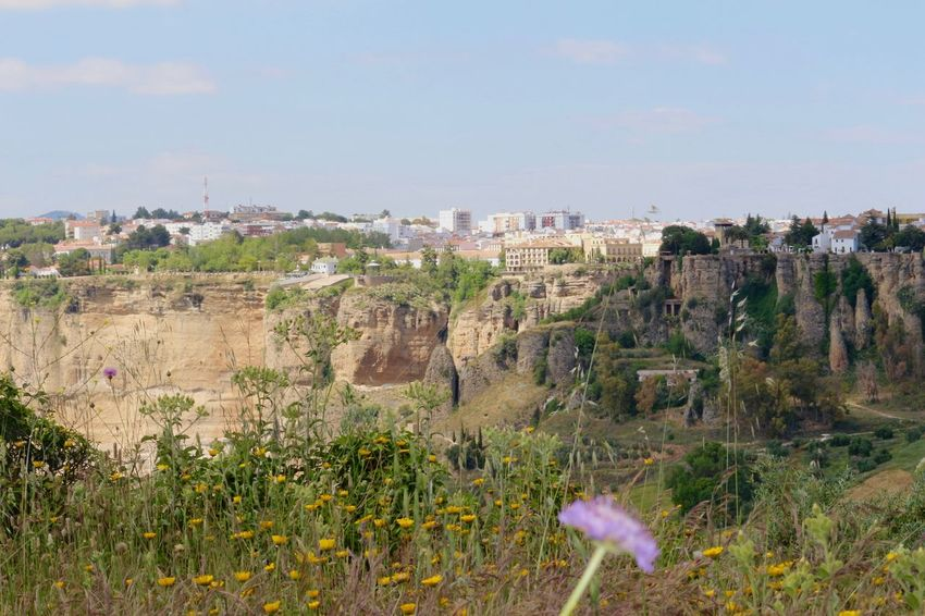 The unique and impressive beauty of Ronda city over the rocks, in Spain! This was and is remarkable for me. It's like a fairy tail place! From near or from far it's just fantastic and amazing! I'll never forget this images! Ancient City Architecture Built Structure Cityscapes Contrasts Day Field And City Flowers High And Low Horizon Over City Impressive Beauty Impressive View Landscape_Collection Landscape_photography Nature Old Town Original Experiences Outdoors Over The Rocks Road Scarp Rocks Sky Tree Unique Urban Landscape