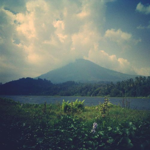 Nature Nature_collection Backtonature Moutain EksploreLampung Lampung INDONESIA