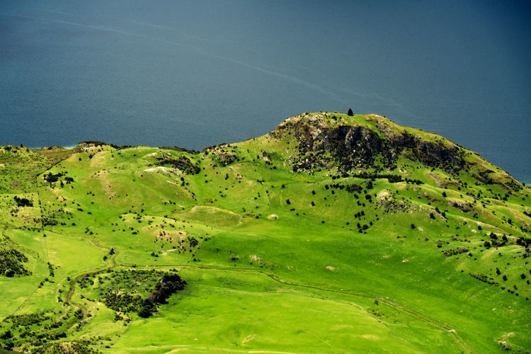 Nice Lines Captured from Roys Peak   Another lonley Tree in Wanaka Art Beautiful Beauty In Nature Blue Composition Contrast Flying High Grass Green Color Lake Lake Wanaka Landscape Lines Lonley Tree Mood Nature New Zealand No People Otago Outdoors Roys Peak Scenics Spring Tree Water EyeEmNewHere