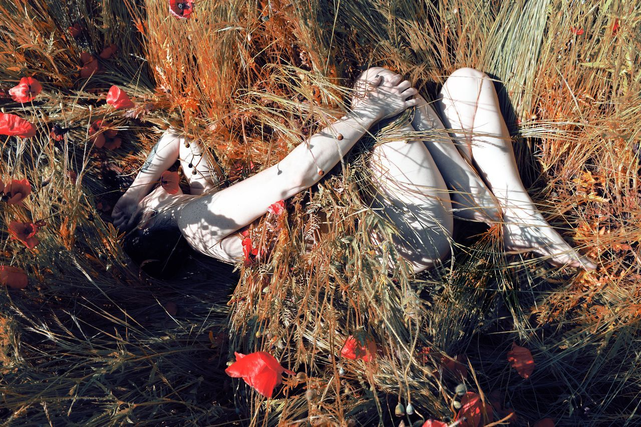 High angle view of sensuous naked woman covered with plants while lying on field