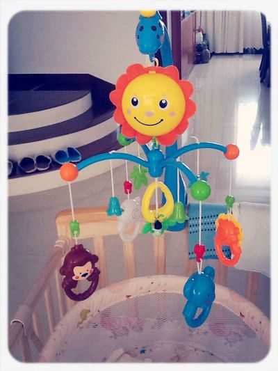 宝宝的玩具 Toys Baby