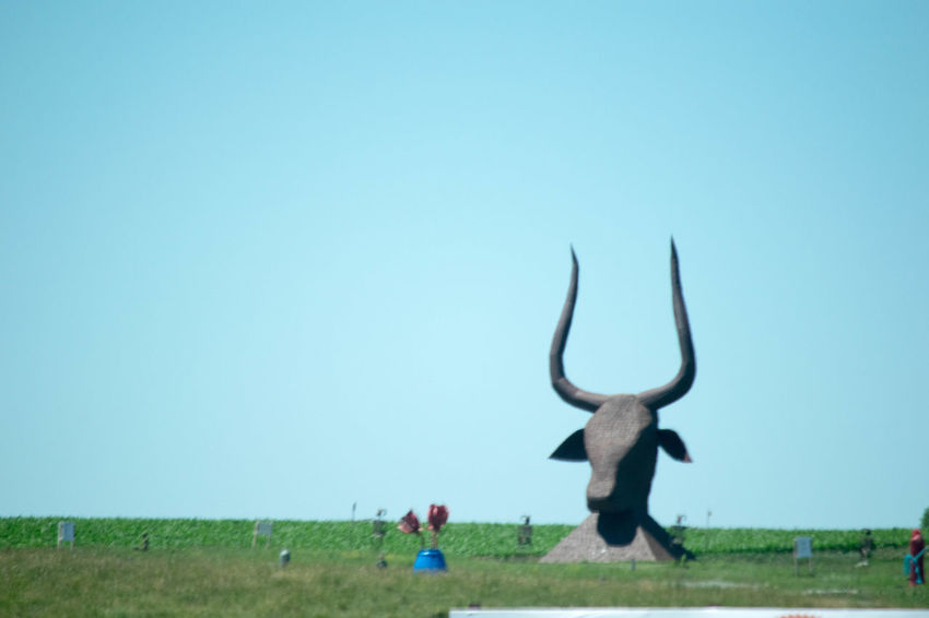 Beauty In Nature Clear Sky Day Field Grass Mammal Nature Outdoors Skulptur Sky Statue