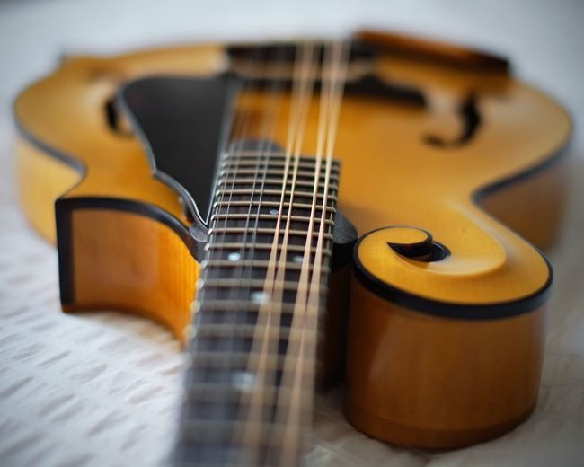 Mandolin Music Musical Instruments Music Photography  Xpro1 35mm F1.4 Yellow Yellow Color Strings Strings Attached Curvy & Beautiful Curves And Lines Wooden Wood - Material Wooden Sculpure Scroll Amber Color Priimephoto Priime EyeEm Best Shots EyeEm Gallery EyeEm Best Edits EyeEmBestPics