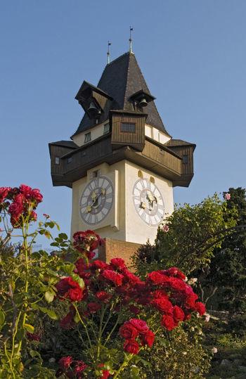 Uhrturm (Clock Tower), Schlossberg Hill, Graz, Austria Austria Graz Clock Tower Uhrturm Clock Roses Park Architecture Building Exterior Built Structure Flower Tower Low Angle View Clear Sky Clock Face