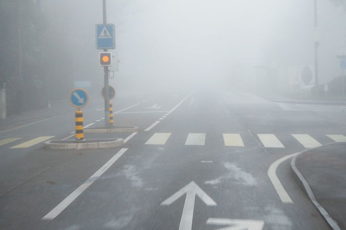 Driving Fog Foggy Foggy Morning Low Visibility On The Move Poor Visibility Road Marking Sign Transportation