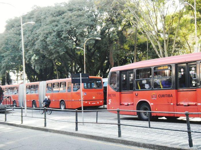 Train on street in city