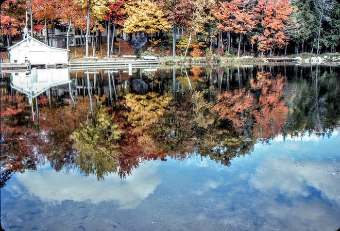 Cottage Life Fall Colors Nature No People Outdoors Reflection_collection Reflections Water Water Reflections Water_collection Waterfront Cottage Cottage Country Atumn Fall Beauty Fall Leaves Cottage Life, Waterway Waterways Reflection Cloud - Sky Landscapes