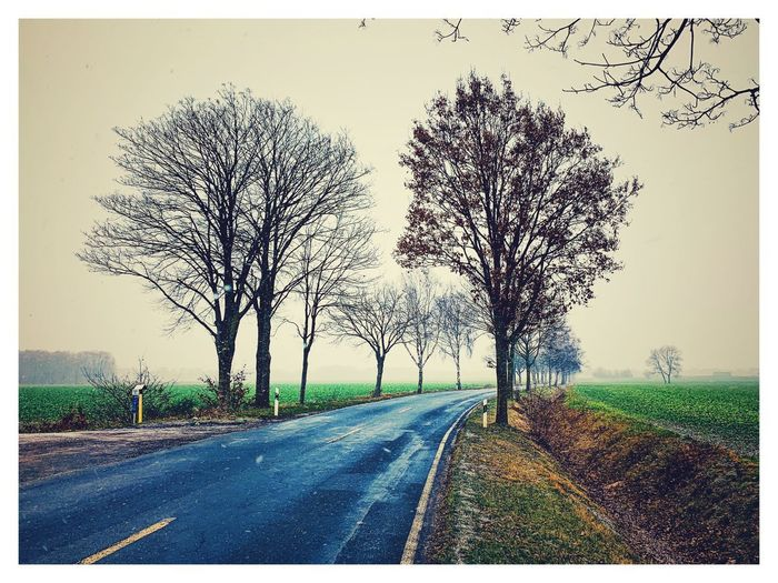 Street Straße Winter Brelingen Wedemark Tree Plant Road Sky Auto Post Production Filter Direction Nature No People Transportation Landscape Outdoors Beauty In Nature Field