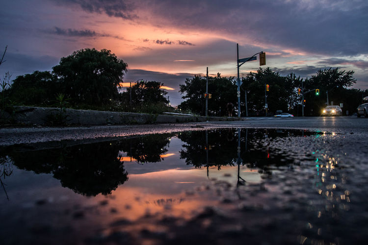 Reflection of trees and cloudy sky on puddle during sunset