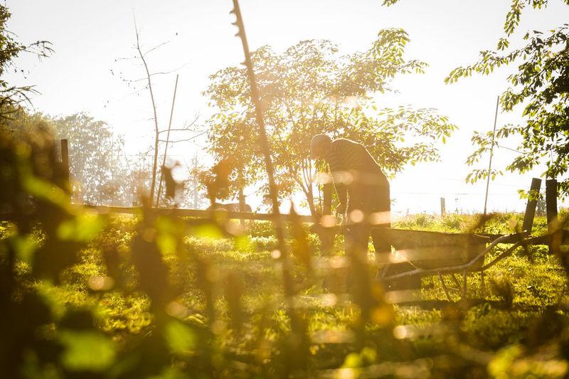 Man on field against trees
