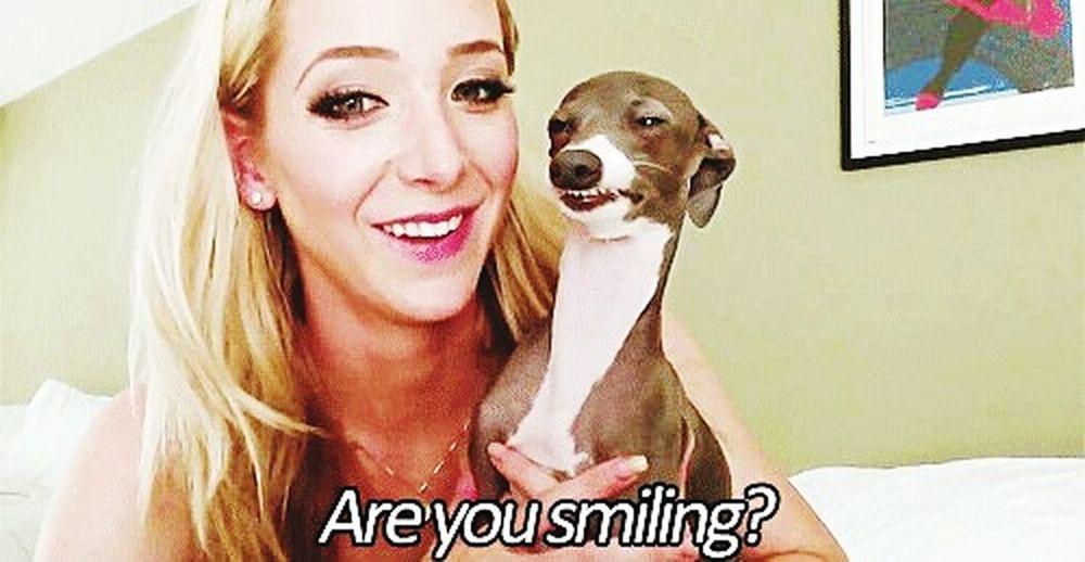yes Videoblogger Blogger Smiling 😸😹