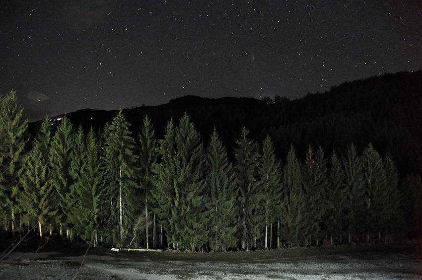 forest with starry sky in the night Astronomy Beauty In Nature Dark Forest Galaxy Landscape Nature Nature Landscape Mountain Night Night Photography No People Outdoors Star - Space Starry Sky Snow Travel Pictures EyeEmNewHere The Week On Eyem Welcome To Black Art Is Everywhere Break The Mold TCPM