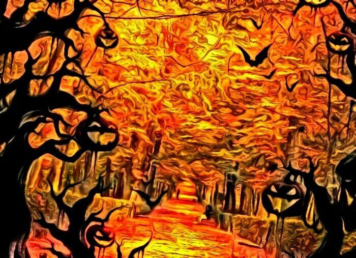 Halloween2015 En Foret Autumn Colors La Jeune Femme Et Le Banc