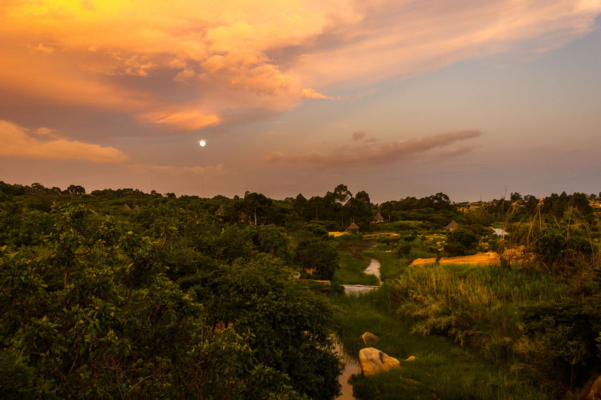 Jungle Sunset Angola Travel Vacations Africa Beauty In Nature Cloud - Sky Day Destination Grass Huila  Landscape Lubango Nature No People Outdoors Scenics Sky Summer Sunset Tourism Tranquil Scene Tranquility