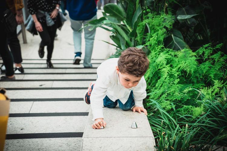 High angle view of boys walking on plants