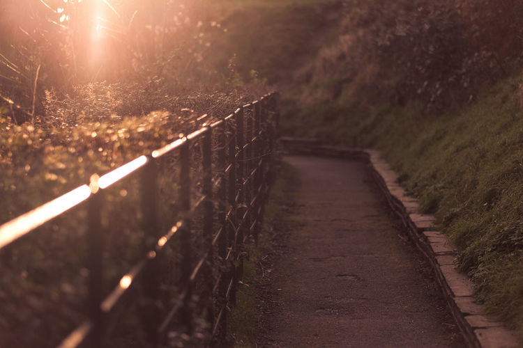 Empty footpath by railing at park during sunset