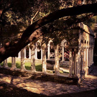 Genovese Italy Cloitre Peaceful