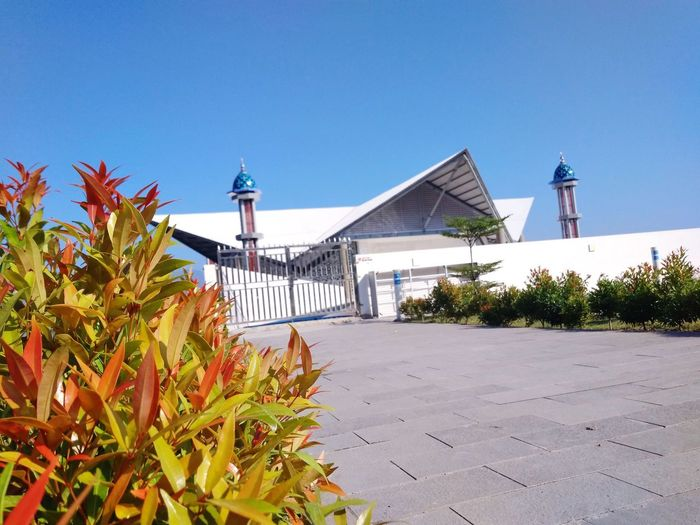 Clear Sky Beach Roof Summer Blue Sea Sky Architecture Building Exterior Built Structure Lighthouse