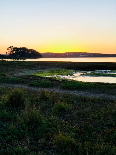 Sunset Bay Beauty In Nature Bay Los Osos, Ca Nature Grass Tranquil Scene Tranquility Sunset Scenics Beauty In Nature Water Sky Day Sea Outdoors
