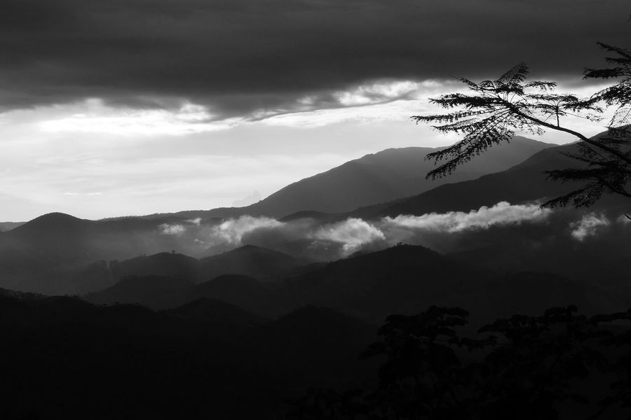 Black & White Balck And White Beauty In Nature Black And White Blackandwhite Blackandwhite Photography Cloud - Sky Day Landscape Mountain Mountain Range Nature No People Outdoors Scenics Silhouette Sky Tranquil Scene Tranquility Tree