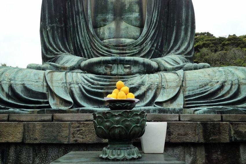 Relaxing Colors Buddha Kamakura