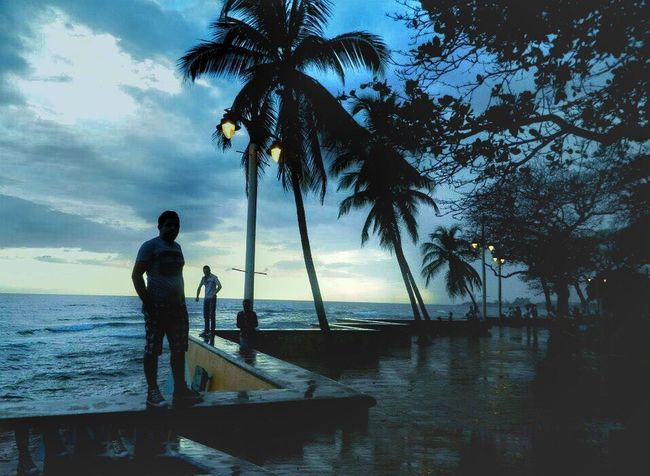 Palm Tree Silhouette Tree Beach Men Water Adult Sea Vacations Child Sky People Night Full Length Outdoors Nature Beauty In Nature Live For The Story