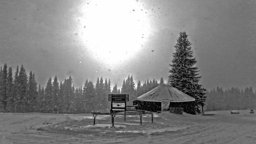 Architecture Beauty In Nature Cold Temperature Day Landscape Nature No People Outdoors Scenics Sky Snow Snow ❄ Snowing Snowing ❄ The Architect - 2017 EyeEm Awards Tranquility Tree Vail  Vail Colorado Vail,co Winter Yurt
