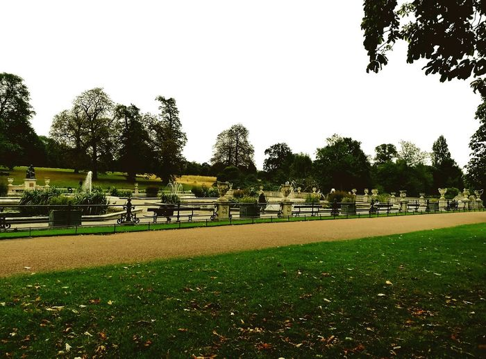 First Eyeem Photo Fountain Fountains Park Lane Garden Grass Grassy Field Grassy Path @KensingtonGardens