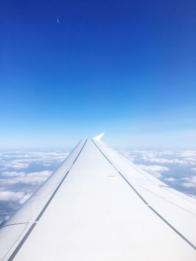 Sky Airplane Blue Transportation No People Day Outdoors Nature Airplane Wing