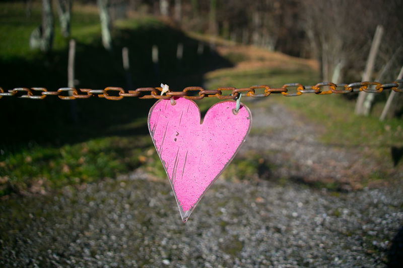 Close-up of heart shape hanging on pink fence