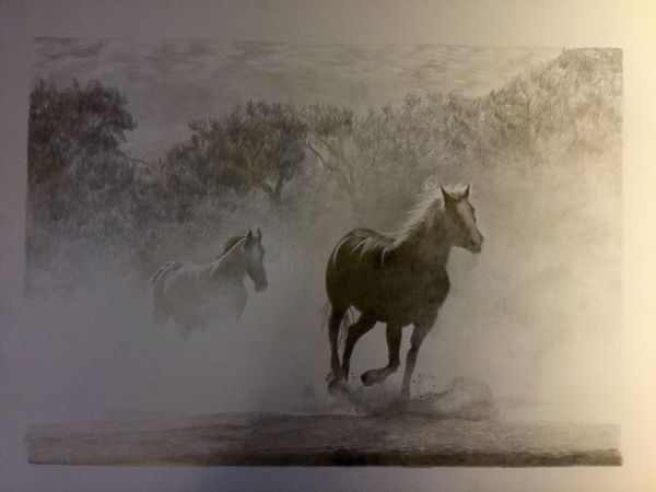 Silverpoint drawing on modern ground of horses in the fog. Drawin with silver and gold wire 20 x 25 cm Horses Equine Art Realistic Art Realistic Drawing Silverpoint Silverpoint Drawing