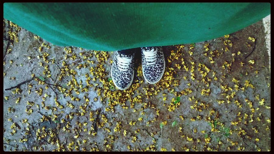 Com chuva ☔ Primaverando Mais Amor