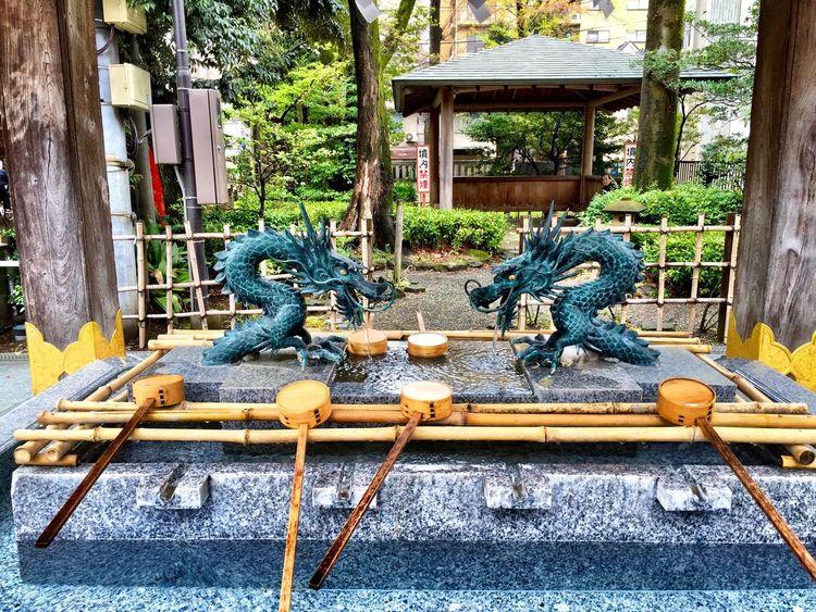 At a Shinto Shrine in Fuchū Dragon Shrine Japan EyeEm Nature Lover Spring