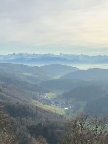 Uetliberg Nature Landscape Tranquil Scene Tranquility Beauty In Nature No People Mountain Mountain Range Scenics