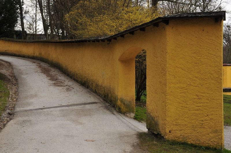 """""""Autumn Wall"""""""