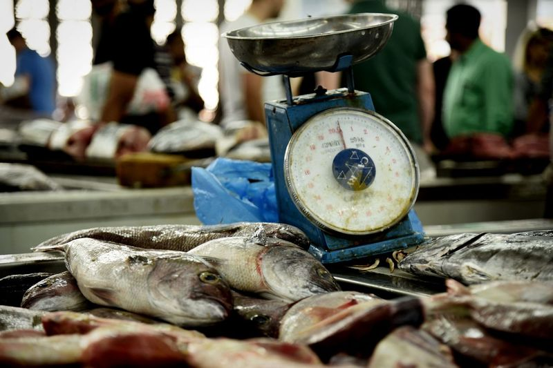 Market Fish FishMarket Close-up Selective Focus Still Life Indoors  Food And Drink Focus On Foreground Equipment Old Market Business Freshness For Sale Table Food