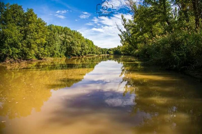 Rio Duero Rio Duero La Rambla Naturaleza Soria Castillayleon San Esteban De Gormaz