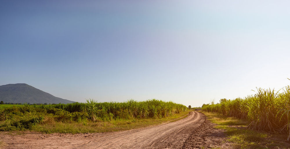 Dirt road amidst landscape against clear sky