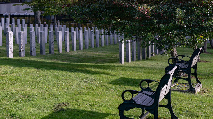 Military cemetery in Halifax Nova Scotia. Grass Plant Green Color Nature No People Day Bench Sunlight Outdoors Shadow Fence Absence Lawn In A Row Seat Boundary Park Front Or Back Yard Park Bench Tranquility Cemetery Military Headstones In A Row