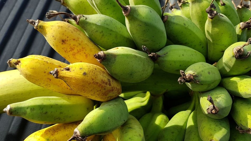 Nature product, banana with no chemical Fruit Food And Drink Green Color Freshness Food No People Close-up Growth Healthy Eating Plant Nature Day Outdoors Beauty In Nature Banana Banana Fruit Ripe Fruit Ripe Fully Fledged Close Up No Chemicals Organic Fruit Tropical Fruit Thai Fruit