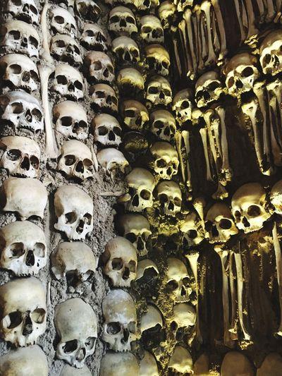 Full frame shot of human skull