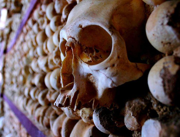 Capela De Ossos Bones Chapel Skull Portugal Still Life Dark Photography Creepy Skeleton Eye Eyesockets Teeth Bald Old Buildings Ancient Decay Wall Wall Art Death Fragile Face