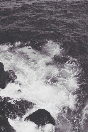 Shore Monochrome