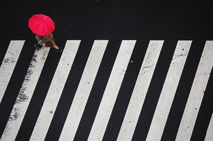 Rain Open Edit Streetphotography Colours Zebra Crossing Tokyo Rule Of Thirds Make Magic Happen The Adventure Handbook Colors Pink Red Are You Kidding Me? Ultimate Japan Market Bestsellers 2017