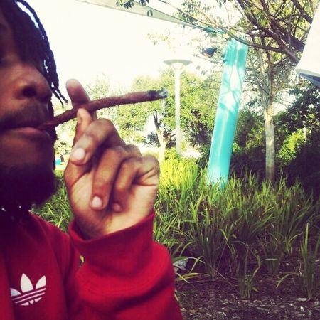 Rastafari Smoking Weed Weed Smoke Weed RASTA Extendo