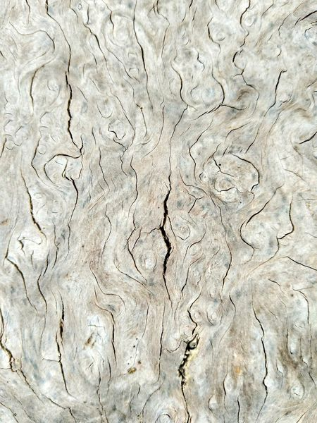 Rupture Wood Backgrounds Textured  Full Frame Pattern Abstract No People Close-up Outdoors Nature Day